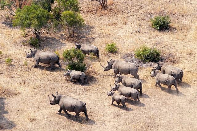 Las 10 mejores atracciones turísticas de Sudáfrica