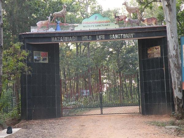 Reserva de Tigres Palamau
