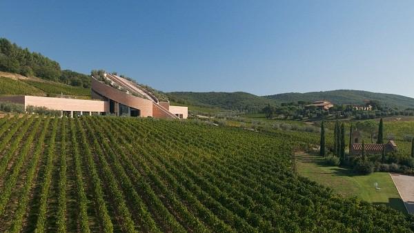 Tours del vino en la Toscana italiana