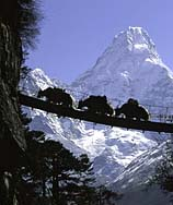 Historia de Nepal
